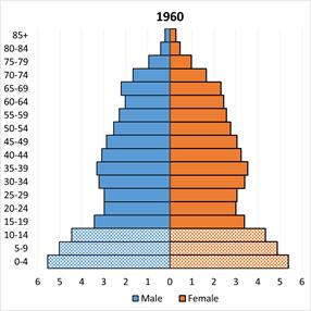 sex-japan-age-sex-pyramid