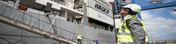 Image of a worker in a construction site helmet and neon vest looking up at a shipment of storage containers at a Florida port
