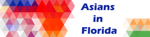 """Image of a multi-colored pattern of triangles and text that reads """"Asians in Florida"""""""
